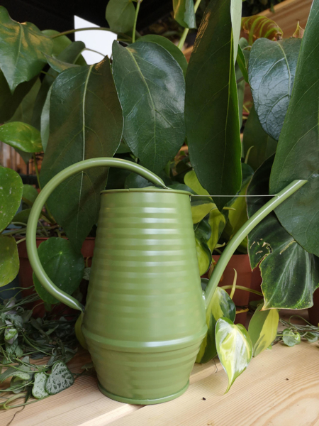 Picture of Small watering can - matt green