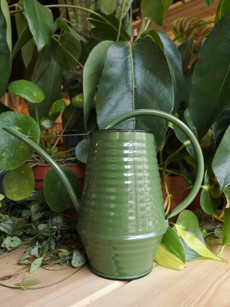 Picture of Small watering can - green