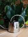 Picture of Medium watering can - silver