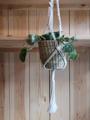 Picture of Macrame Hanger - Short  Natural