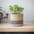 Picture of Striped jute pot   Garden Trading