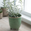 Picture of Crackled ceramic green pot | Garden Trading