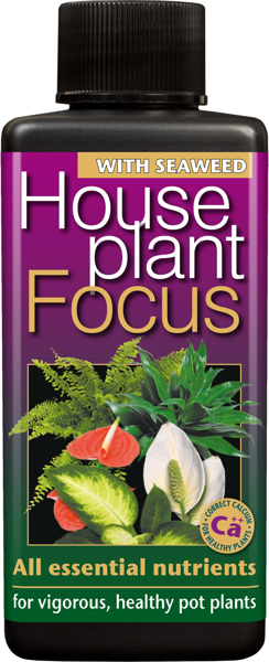 Picture of Houseplant Focus feed 100ml