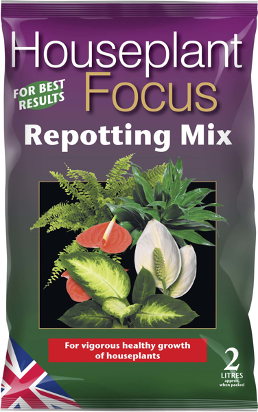 Picture of Houseplant Focus compost 2L