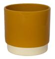 Picture of Eno pot Mustard | Ivyline