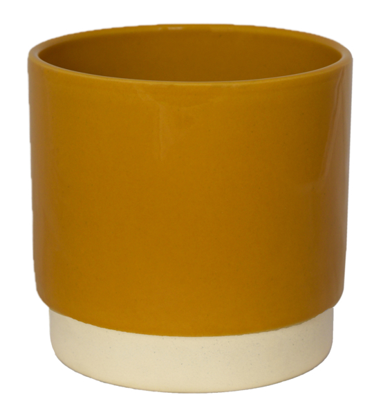 Picture of Eno pot mustard - large
