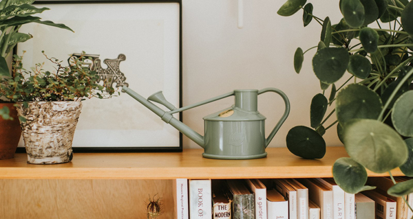 Picture of The Langley Sprinkler - sage  green | Haws