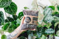 Picture of 2.5l Calathea & Maranta potting mix | Soil Ninja