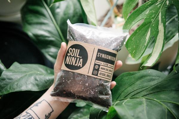 Picture of 2.5l Ficus potting mix   Soil Ninja