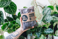 Picture of 2.5l Monstera & Philodendron potting mix | Soil Ninja