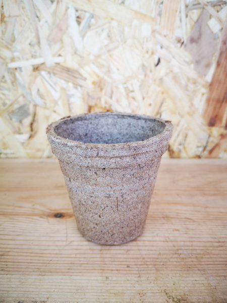 Picture of 8cm biodegradable nursery pot