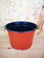 Picture of 14cm nursery pot