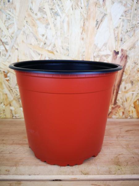 Picture of 19cm nursery pot
